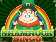 Shamrock Bingo logo