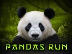 Panda's Run